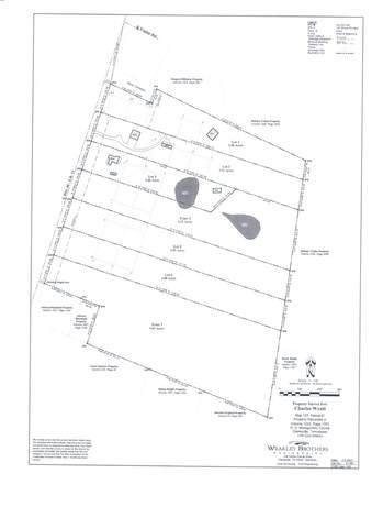 1 Highway 48, Cunningham, TN 37052 (MLS #RTC2275561) :: Village Real Estate