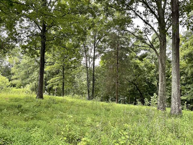 0 Duffer Hollow Rd, Bethpage, TN 37022 (MLS #RTC2275810) :: RE/MAX Fine Homes