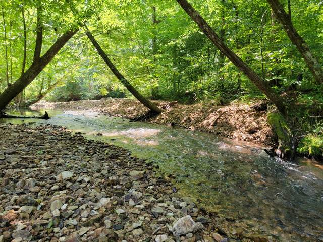 0 Blue Buck Creek Rd, Duck River, TN 38454 (MLS #RTC2276002) :: Team George Weeks Real Estate