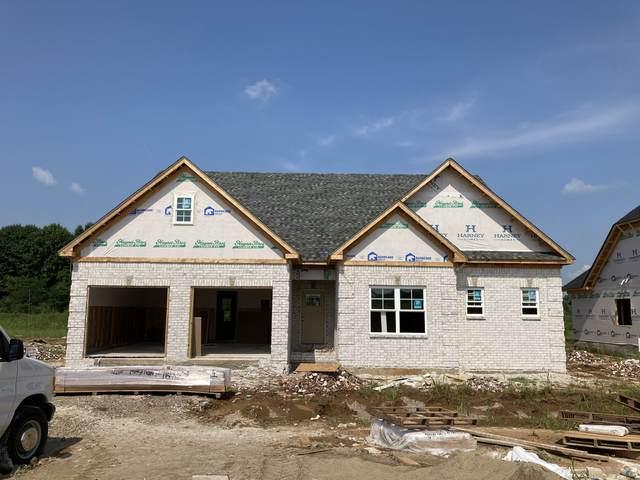 2224 Winterdale Drive Lot 267, Murfreesboro, TN 37128 (MLS #RTC2276244) :: Team Wilson Real Estate Partners