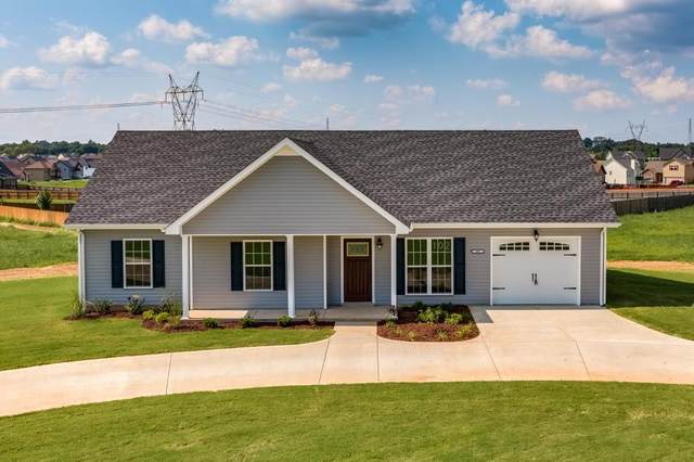 501 Tracy Ln, Clarksville, TN 37040 (MLS #RTC2276458) :: Village Real Estate