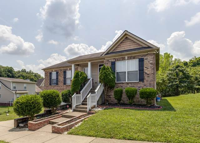 505 Pippin Dr, Antioch, TN 37013 (MLS #RTC2277199) :: The Milam Group at Fridrich & Clark Realty