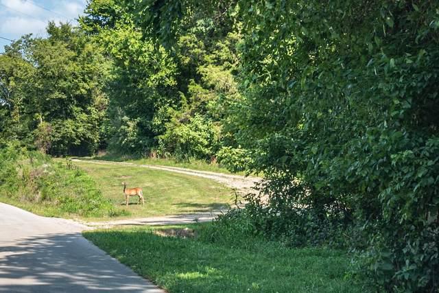 0 Honey Prong Rd, Hartsville, TN 37074 (MLS #RTC2277252) :: Nashville on the Move