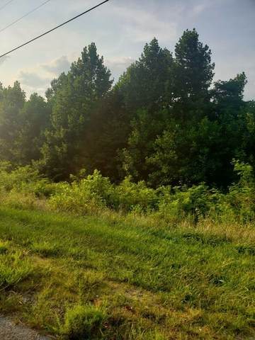 0 Hunters Lndg Ln, Smithville, TN 37166 (MLS #RTC2277614) :: Nashville on the Move
