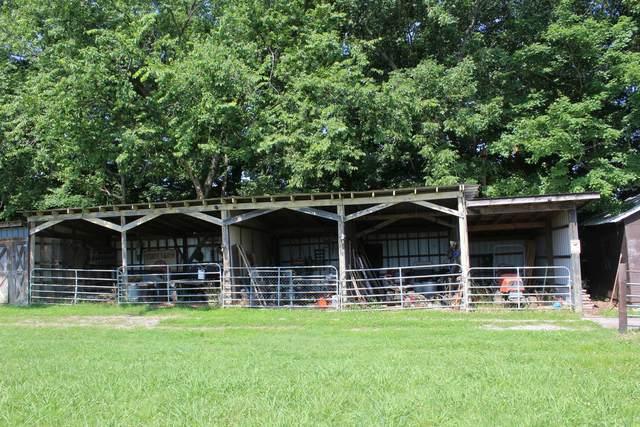 506 Jenkins Dr, Centerville, TN 37033 (MLS #RTC2278011) :: Village Real Estate