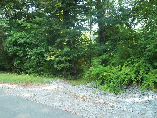 0 Swiper Dr, Smithville, TN 37166 (MLS #RTC2278378) :: Ashley Claire Real Estate - Benchmark Realty