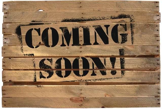 1009 Thrasher Dr, Clarksville, TN 37040 (MLS #RTC2278708) :: Real Estate Works