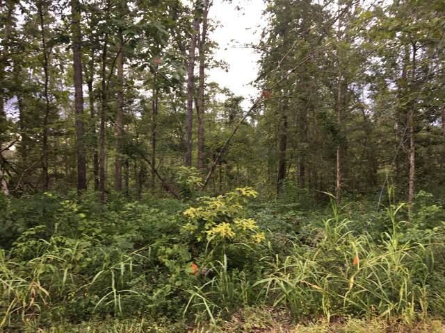 0 Deep Cut Road, Erin, TN 37061 (MLS #RTC2278940) :: The Helton Real Estate Group