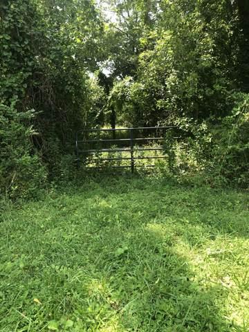 2 Sanford Rd, Nolensville, TN 37135 (MLS #RTC2280350) :: Nashville Home Guru
