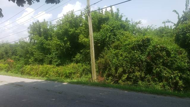 0 Warner Bridge Rd, Shelbyville, TN 37160 (MLS #RTC2280412) :: John Jones Real Estate LLC
