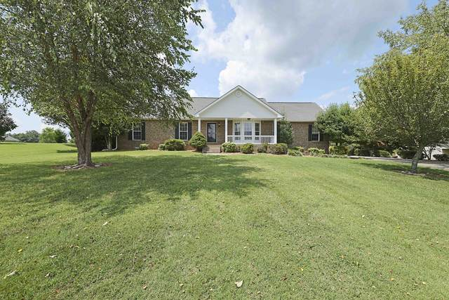 4133 Meadow View Cir, Pleasant View, TN 37146 (MLS #RTC2280959) :: The Home Network by Ashley Griffith