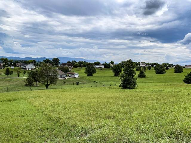 0 Leeper Overlook, Dandridge, TN 37725 (MLS #RTC2282751) :: RE/MAX Homes and Estates, Lipman Group