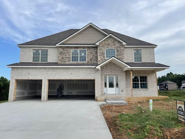 509 Cresthaven Ln, Clarksville, TN 37043 (MLS #RTC2282984) :: Nelle Anderson & Associates