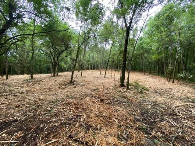 645 Coop Road, Bell Buckle, TN 37020 (MLS #RTC2284023) :: DeSelms Real Estate