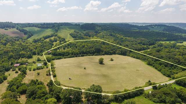 92 Hudson Hollow Rd, Fayetteville, TN 37334 (MLS #RTC2286196) :: Village Real Estate