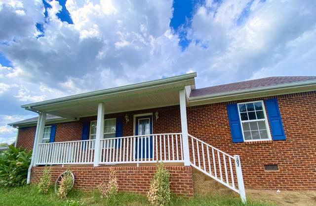 207 Brittany Ln, Portland, TN 37148 (MLS #RTC2286279) :: RE/MAX Homes and Estates, Lipman Group
