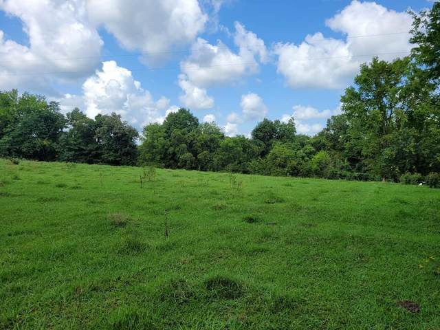 1863 Lynnville Hwy, Cornersville, TN 37047 (MLS #RTC2286976) :: Nashville Home Guru