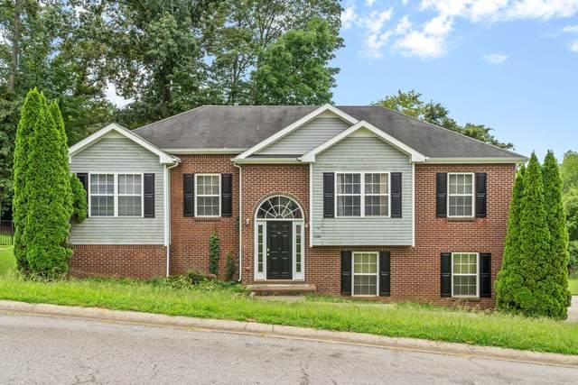 3389 Shivas Rd, Clarksville, TN 37042 (MLS #RTC2287044) :: Village Real Estate