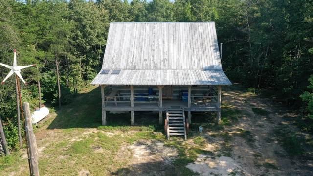485 Liberty Ln, Rock Island, TN 38581 (MLS #RTC2287082) :: Village Real Estate