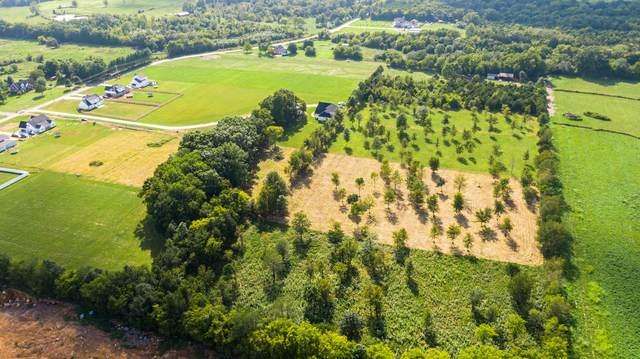 1230 Walnut Grove Rd, Christiana, TN 37037 (MLS #RTC2287512) :: John Jones Real Estate LLC