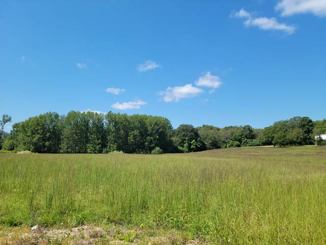 607 Pea Ridge Rd, Liberty, TN 37095 (MLS #RTC2289195) :: Maples Realty and Auction Co.