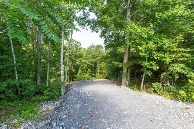 1128 Jacobs Ct, Joelton, TN 37080 (MLS #RTC2289234) :: Village Real Estate