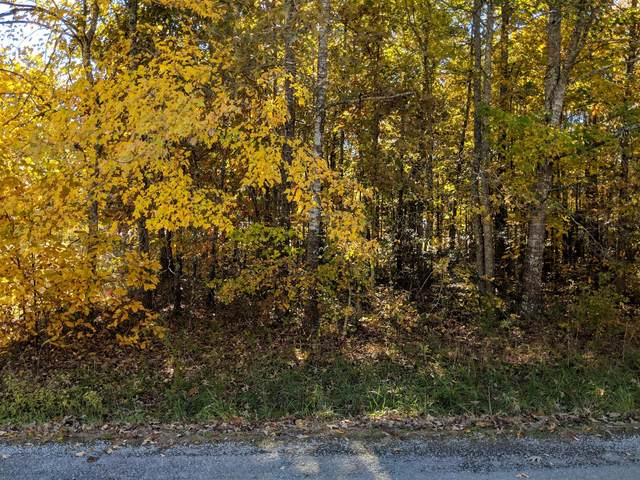 0 Lakeshore Dr, Beechgrove, TN 37018 (MLS #RTC2289901) :: John Jones Real Estate LLC