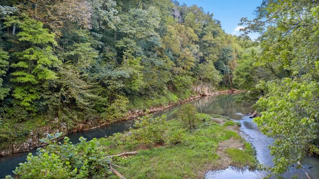 141 Blue Hole Rd, Clarksville, TN 37042 (MLS #RTC2290080) :: Cory Real Estate Services