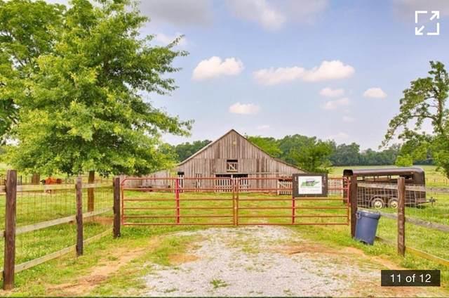 12 N King Rd, Flintville, TN 37335 (MLS #RTC2290519) :: Re/Max Fine Homes