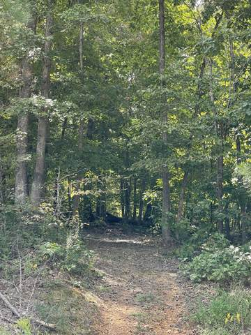 0 Fantasy Dr, Lyles, TN 37098 (MLS #RTC2290673) :: Cory Real Estate Services