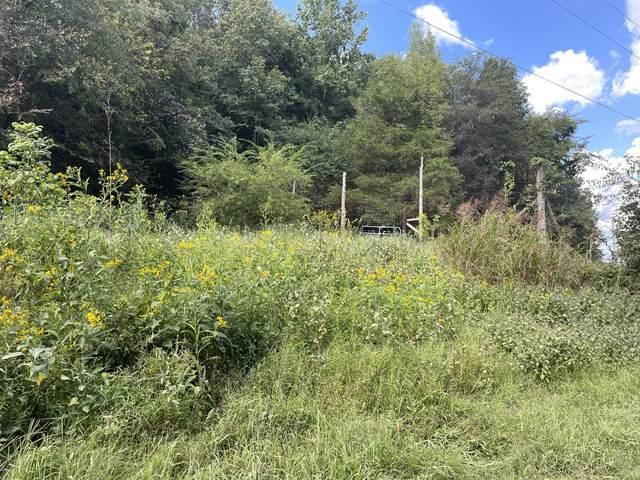 40 Grisham Hollow Ln, Elmwood, TN 38560 (MLS #RTC2291045) :: RE/MAX Homes and Estates, Lipman Group