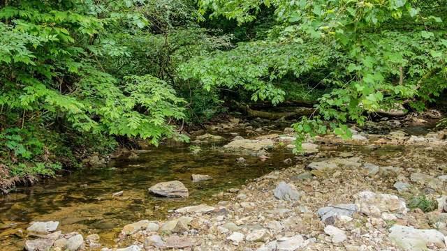 8016 Poplar Ridge Ln, Primm Springs, TN 38476 (MLS #RTC2291400) :: Morrell Property Collective | Compass RE