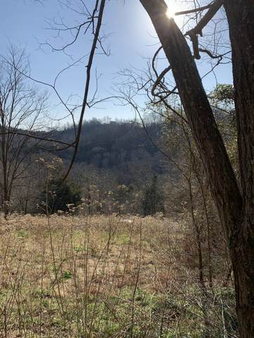 0 Rutherford Lane E, Smithville, TN 37166 (MLS #RTC2291566) :: Berkshire Hathaway HomeServices Woodmont Realty