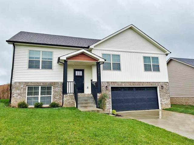1341 Harmon Ln, Clarksville, TN 37042 (MLS #RTC2291587) :: Re/Max Fine Homes