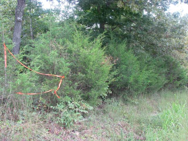 1725 Old Highway 13, Waverly, TN 37185 (MLS #RTC2292125) :: Morrell Property Collective | Compass RE