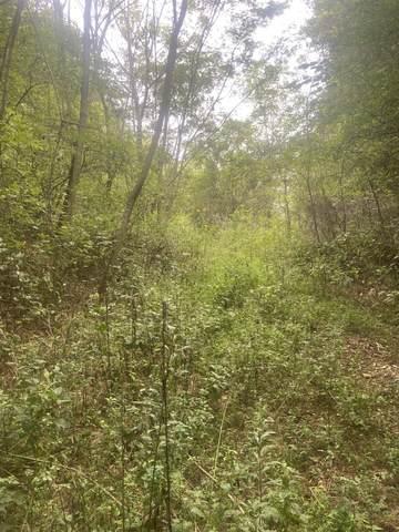 1615 Hurricane Creek Rd, Lynchburg, TN 37352 (MLS #RTC2292175) :: Morrell Property Collective | Compass RE