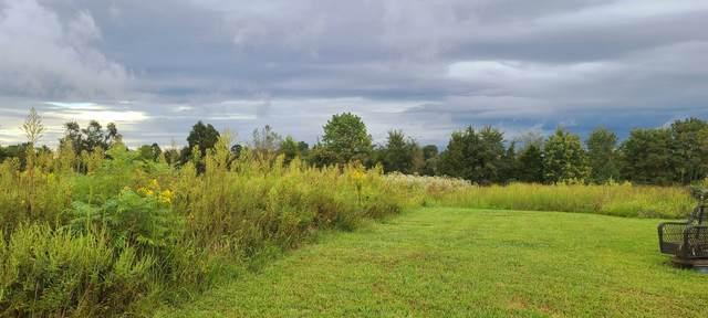 410A Clark Hollow Rd, Westmoreland, TN 37186 (MLS #RTC2292268) :: Village Real Estate