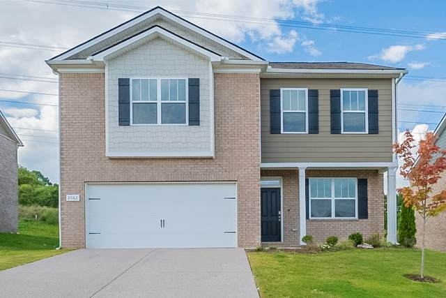 2062 Sunflower Dr, Spring Hill, TN 37174 (MLS #RTC2292923) :: RE/MAX Homes and Estates, Lipman Group