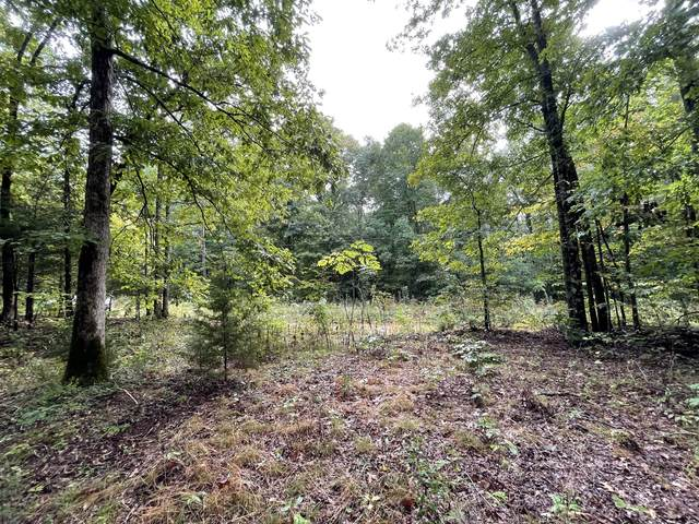 0 School House Rd, Primm Springs, TN 38476 (MLS #RTC2292944) :: Ashley Claire Real Estate - Benchmark Realty
