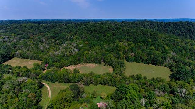 1271 Young Hollow Road, Pulaski, TN 38478 (MLS #RTC2293005) :: Berkshire Hathaway HomeServices Woodmont Realty