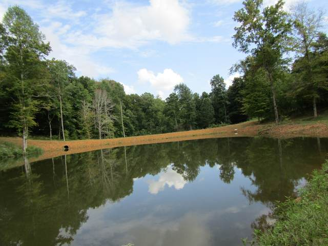 0 Cowan, Dickson, TN 37055 (MLS #RTC2293059) :: Your Perfect Property Team powered by Clarksville.com Realty