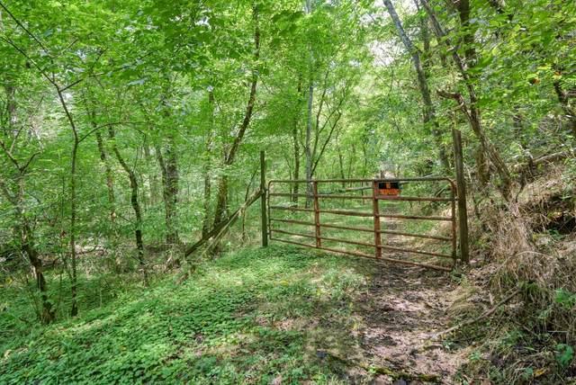 0 W D Kemp Lane, Whitleyville, TN 38588 (MLS #RTC2294348) :: Village Real Estate