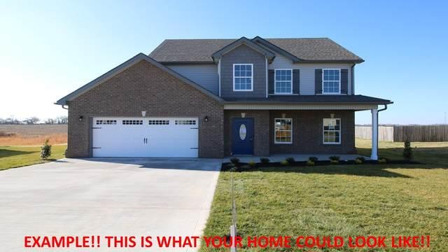 388 Summerfield, Clarksville, TN 37040 (MLS #RTC2294662) :: Nelle Anderson & Associates