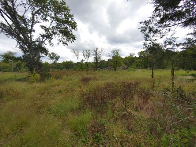 0 Overall Creek  Rd, Rockvale, TN 37153 (MLS #RTC2294806) :: Morrell Property Collective | Compass RE
