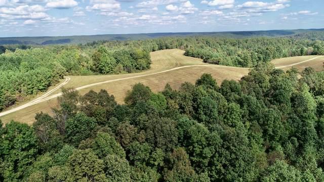169 Forest Ridge Road, Hohenwald, TN 38462 (MLS #RTC2295443) :: John Jones Real Estate LLC