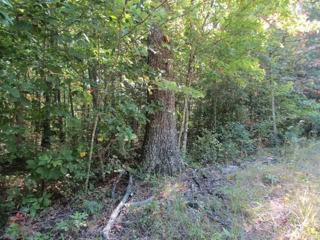 12 .01 Ac River Bluff Rd., Jamestown, TN 38556 (MLS #RTC2295873) :: Nashville on the Move