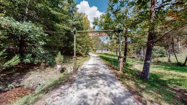 3781 Boston Theta Rd, Columbia, TN 38401 (MLS #RTC2296626) :: Village Real Estate