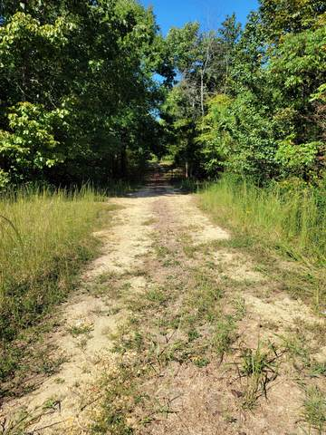0 Keel Hollow Rd, Dover, TN 37058 (MLS #RTC2297888) :: Nashville on the Move