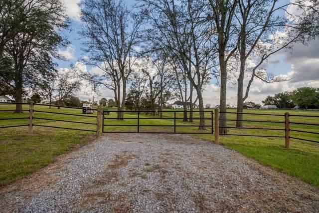 1003 Liberty Ln, Gallatin, TN 37066 (MLS #RTC2298110) :: Team Wilson Real Estate Partners