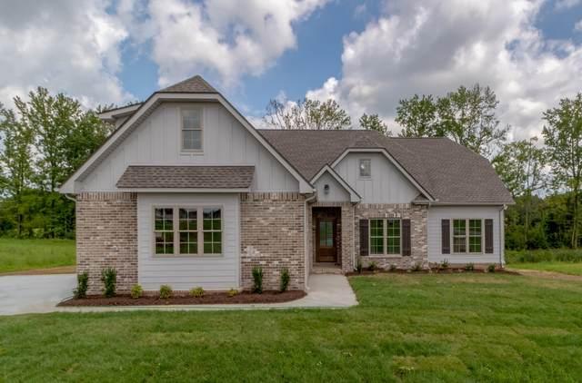 344 Ellington Drive, Clarksville, TN 37043 (MLS #RTC2299063) :: John Jones Real Estate LLC